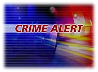Image result for PICTURES OF CRIME ALERTS