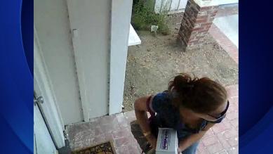 porch-pirate